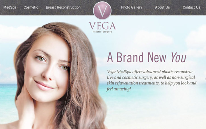 Vega Website Branding One