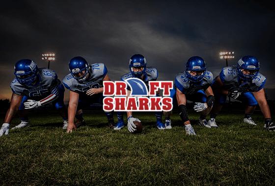 Draft Sharks PPC Case Study